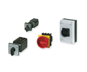 Cam Rotary Switches Upto 315A